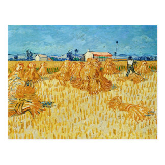 Van Gogh; Harvest in Provence Postcard