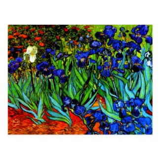 Van Gogh - Irises Postcard