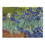 Van Gogh Irises Vintage Fine Art Floral Postcard