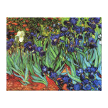 Van Gogh Irises, Vintage Garden Fine Art Canvas Print