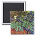 Van Gogh Irises, Vintage Garden Fine Art Square Magnet
