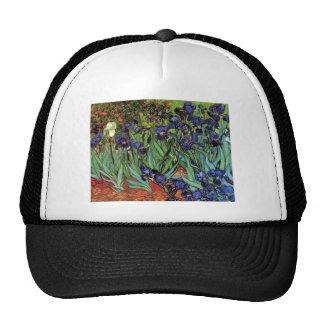 Van Gogh Irises, Vintage Post Impressionism Art Cap