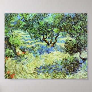 Van Gogh - Olive Grove - Bright Blue Sky Poster