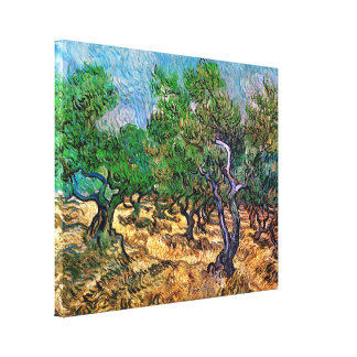 Van Gogh - Olive Grove Stretched Canvas Prints