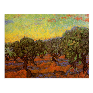 Van Gogh Olive Grove Orange Sky, Vintage Fine Art Postcard