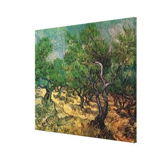 Van Gogh Olive Grove, Vintage Landscape Fine Art Gallery Wrapped Canvas