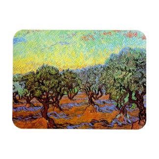 Van Gogh - Olive Grove with Orange Sky Rectangular Photo Magnet