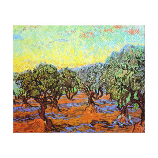 Van Gogh - Olive Grove with Orange Sky Gallery Wrapped Canvas