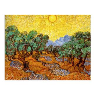 Van Gogh Olive Trees Postcard