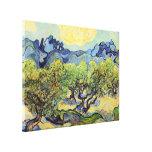 Van Gogh Olive Trees, Vintage Fine Art Canvas Prints