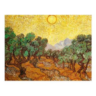 Van Gogh Olive Trees Yellow Sky & Sun Fine Art Postcard