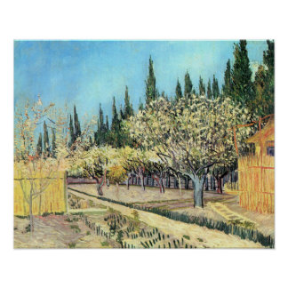 Van Gogh Orchard in Blossom, Bordered by Cypresses Poster