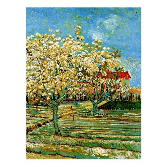 Van Gogh - Orchard in Blossom Postcard