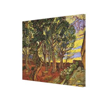 Van Gogh The Garden of Saint Paul Hospital Gallery Wrap Canvas