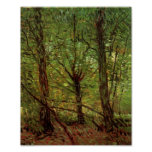 Van Gogh Trees and Undergrowth Fine Art Poster