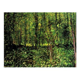 Van Gogh Trees and Undergrowth, Vintage Fine Art Postcard