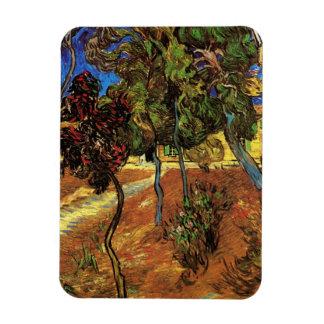 Van Gogh Trees in the Garden, Saint Paul Hospital Rectangular Photo Magnet