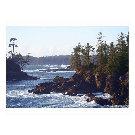 Vancouver Island West Coast in Oils Postcard