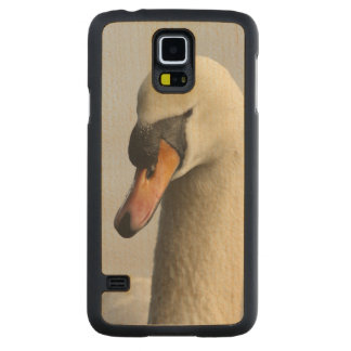 Vancouver, Stanley Park, Mute Swan (Cygnus olor) Carved Maple Galaxy S5 Case