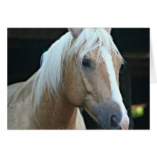 Vanilla Dream Horse Note Card