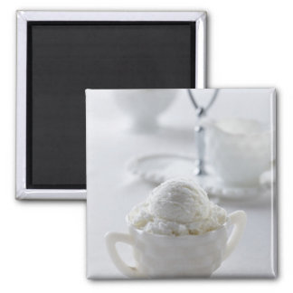 Vanilla ice cream in a white environment magnet