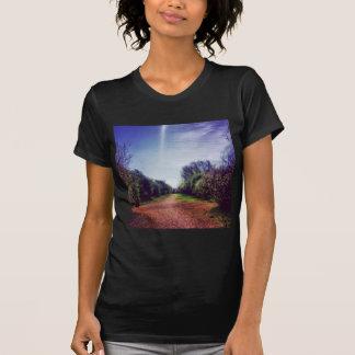 Vanishing point shirts