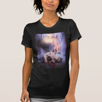 Vanishing Shirt