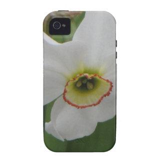 Vanity iPhone 4 Covers