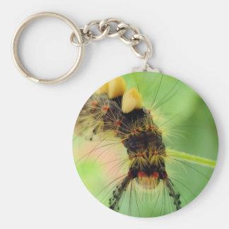 vapourer moth ( caterpillar ) basic round button key ring