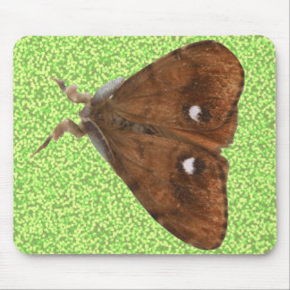 Vapourer Moth Mousepad