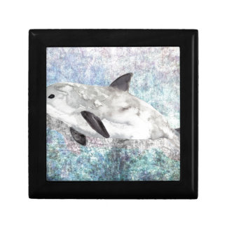 Vaquita River Dolphin Endangered Animal Painting Gift Box