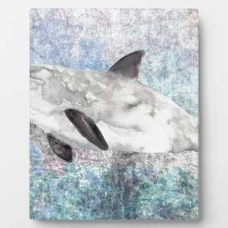 Vaquita River Dolphin Endangered Animal Painting Plaque