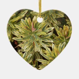 Vareigated Plant Design Ornament