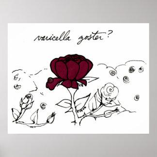 Varicella Zoster print