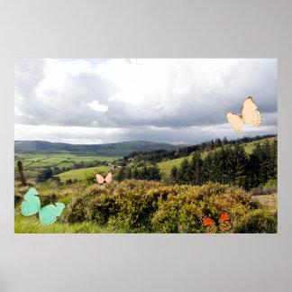 varied Species of Butterflies in an Irish Meadow Posters