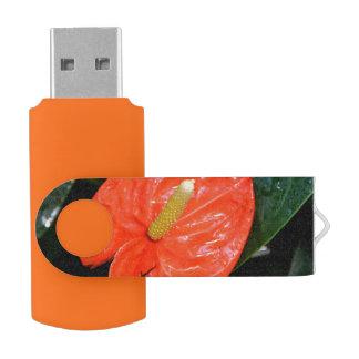 Variegated Chinese Lantern Flash Drive
