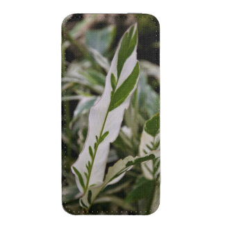 Variegated Ginger Smartphone Pouch