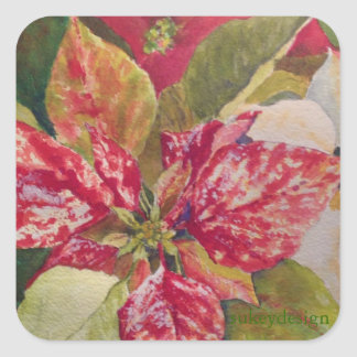 Variegated Poinsettia Sticker