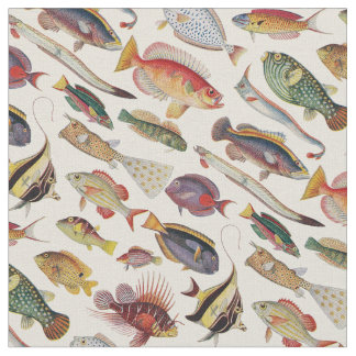 Varieties of Fish Fabric