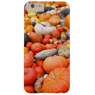 Variety of squash for sale, Germany Barely There iPhone 6 Plus Case