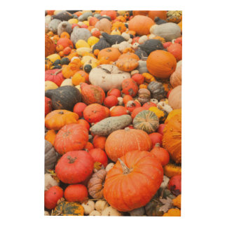 Variety of squash for sale, Germany Wood Canvases