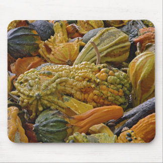 Variety of squash mouse mat