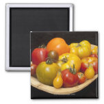 Variety of tomatoes square magnet