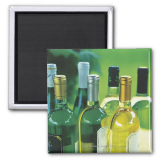 Variety of wine bottles magnets