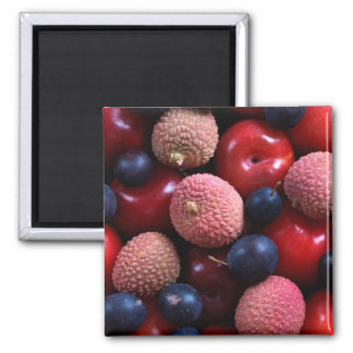 Various Fruits Magnet