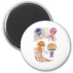 Various Jelly Fish Refrigerator Magnet