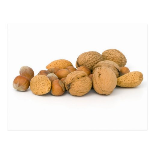 Various Nuts Including Hazelnuts Walnuts And Almon Post Card