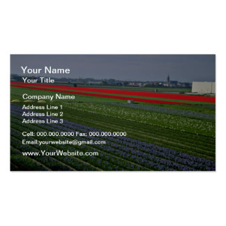 Various patches of flowers, Netherlands  flowers Pack Of Standard Business Cards