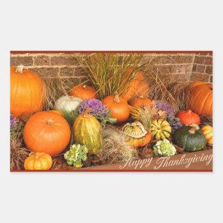 Various pumpkins rectangular sticker