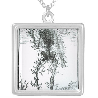 Vascular System of the Body Silver Plated Necklace